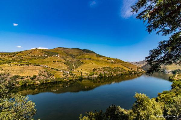 杜羅河酒莊之旅-杜羅河谷與波特酒發源地|Pinhao|葡萄牙租車